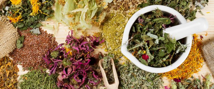 """Delavnica """"Zdravilne rastline za domačo lekarno- nabiranje, sušenje, shranjevanje, predelava in uporaba"""""""